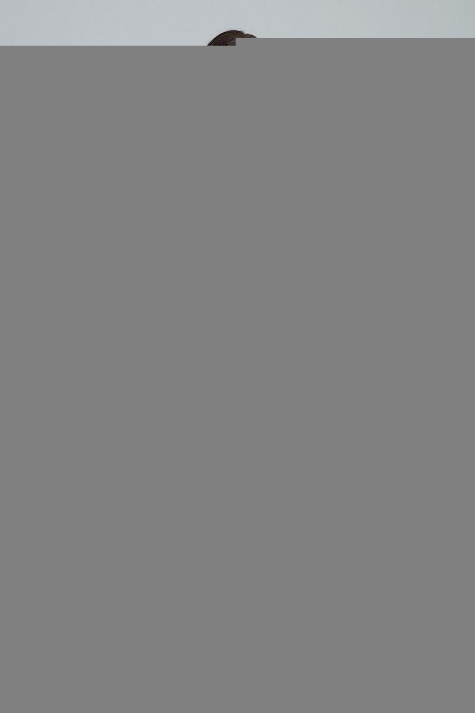 Denní šaty model 135763 Figl XL