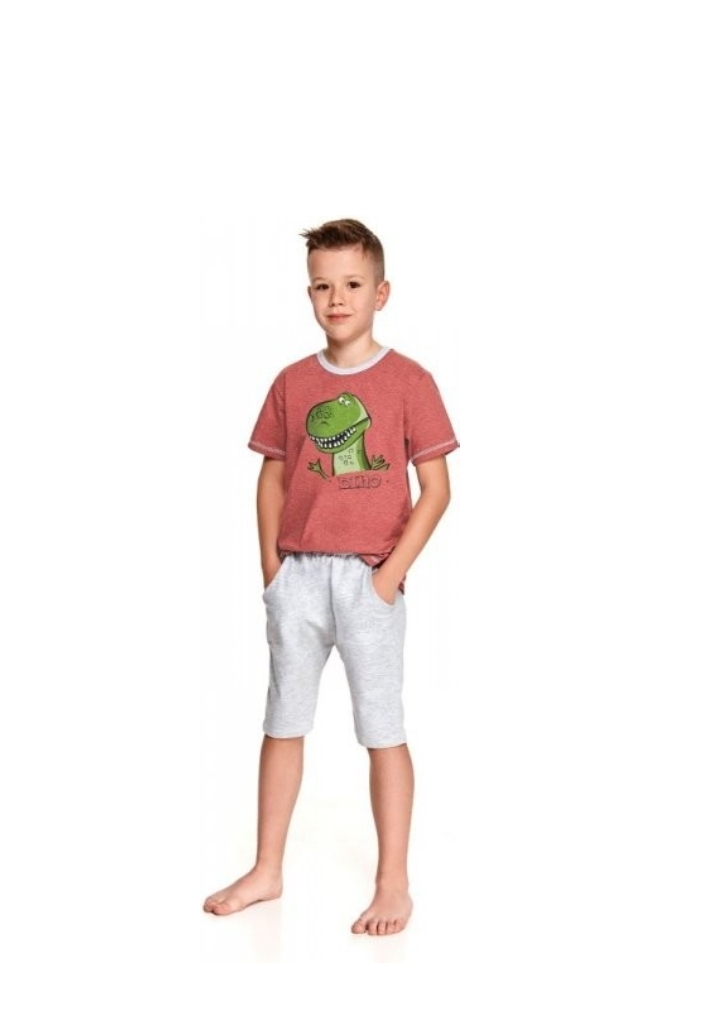 Detské pyžamo Taro Alan 2215 116
