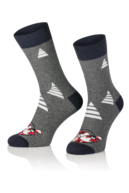 Pánské vánoční ponožky Tak Intenso 1887 Barva: modrofialová, Velikost: 44-46
