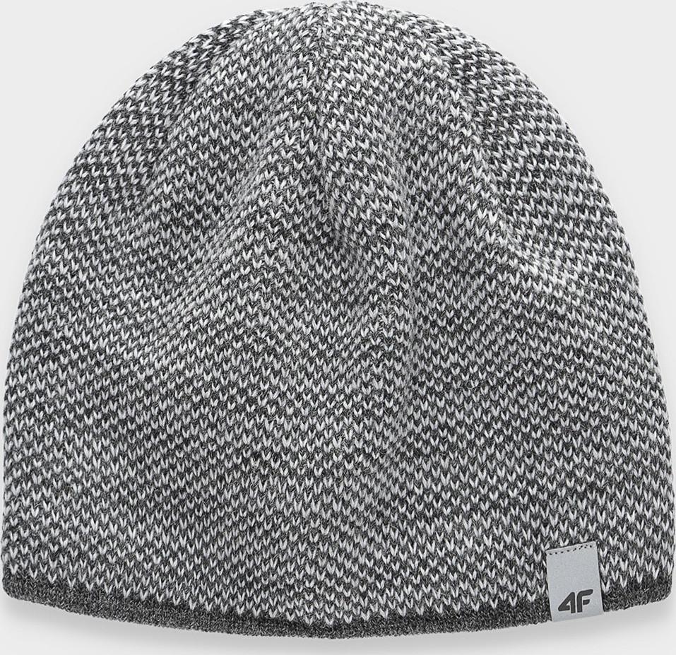 Pánská zimní čepice 4F CAM156 Šedá L